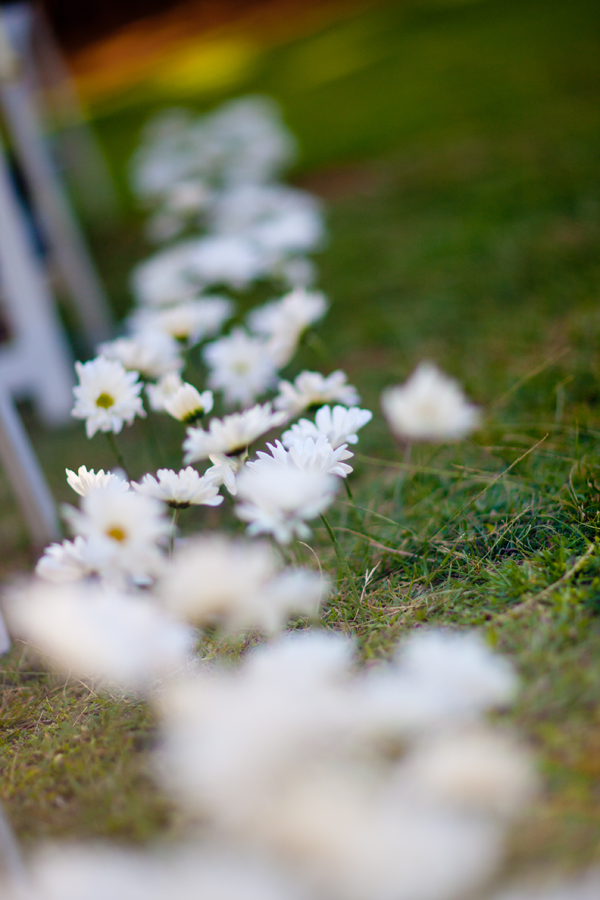 White daisies for a spring wedding by destination wedding planner Mango Muse Events
